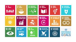 Download Understanding the Dimensions of Sustainable Development Video