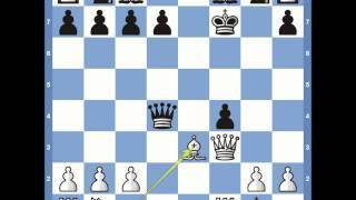 Download Kings Gambit: Muzio Gambit Variation Video