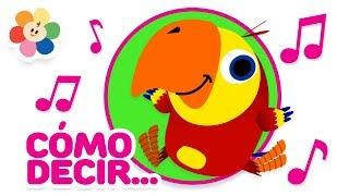 Download Nuevas Palabras 2   Palabras Para Niños   Videos Educativos de Vocabulario   Vocabularry   BabyFirst Video