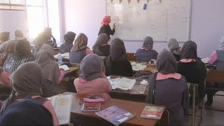 Download أخبار عربية وعالمية - اليونسكو تحيي اليوم العالمي للمعلم 2017 Video