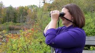 Download How to get crystal clear focus with your binoculars Video