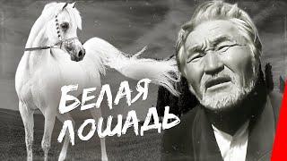 Download Белая лошадь (1966) фильм Video