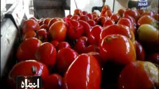 Download #انتباه | مشاهد حصرية للطماطم الفاسدة داخل مصنع الكاتشب و الصلصة فى مراحل التصنيع Video