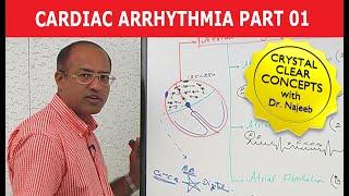 Download Cardiac Arrhythmia - Part 1/3 Video