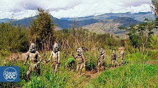 Download Full Documentary | Ambassadors of the jungle - Planet Doc Full Documentaries Video