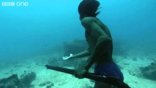 Download Superhuman Filipino diver from the Badjao tribe ;BBC Video