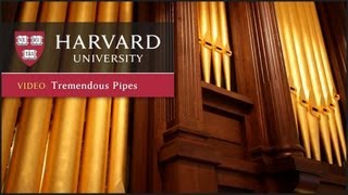 Download New Fisk organ arrives at Harvard's Memorial Church Video