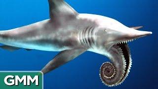 Download 5 Craziest Looking Prehistoric Creatures | RANKED Video