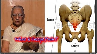 Download Tail Bone Pain | Coccyx Pain Relief Dr.P.S.Lalitha Video