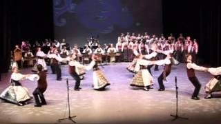 Download JADVYGOS polka .mpg Video