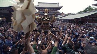 Download SANJA MATSURI - IS JAPAN COOL? MATSURI - 祭 (三社祭/東京) Video