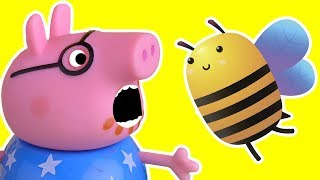 Download Bee Chasing for Daddy Pig episode - Cartoons for kids Video