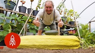 Download This Gardener Regularly Grows 100-Pound Vegetables Video
