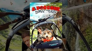 Download A Doggone Hollywood Video