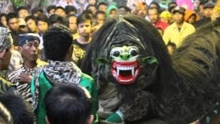 Download Lundoyo Singo Barong Macan Macanan Barong Kemiren Video