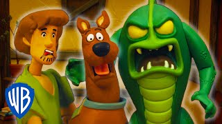 Download Scooby-Doo! Mystery Cases | The Case of the Party Mayhem | WB Kids Video