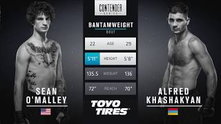 Download FREE FIGHT | Sean O'Malley Scores Impressive KO | DWTNCS Week 2 Contract Winner - Season 1 Video
