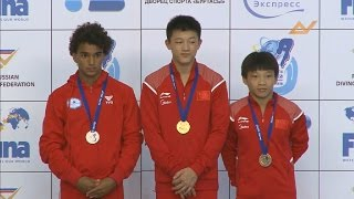 Download 20th FINA World Junior Diving Championships 2014 - 3m Boys B Final - Uncut Video