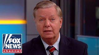 Download Lindsey Graham talks immigration, midterms, Warren DNA test Video
