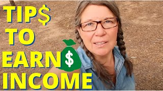 Download How to Earn Money as a Full Time RVer or VanDweller Video