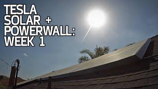 Download SYSTEM ACTIVATED! Tesla Solar + Powerwall Week 1 Video