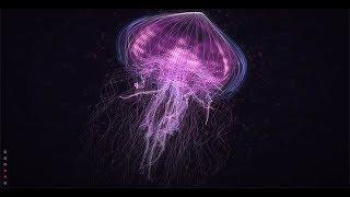 Download Creatures of Light Underwater - Best Documentary 2018 [1080p] NEW Video