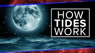 Download What Physics Teachers Get Wrong About Tides! | Space Time | PBS Digital Studios Video