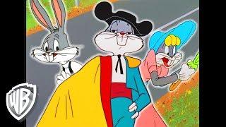 Download Looney Tunes en Español Latino America   ¿Era ese Bugs Bunny?   WB Kids Video