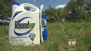 Download I-Team: Cancer Patients Sue Roundup, Claim Ingredient Made Them Sick Video