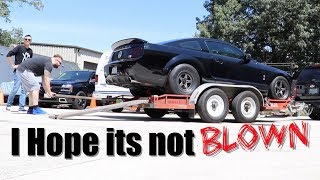 Download My 900HP GT500 is Broken - Just my luck Mustang Engine problems Video