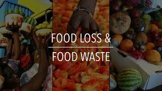 Download FAO Policy Series: Food Loss & Food Waste Video