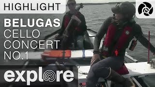 Download Cello Concert #1 - Beluga Boat - Live Cam Highlight Video
