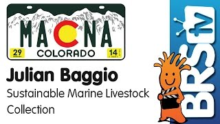Download Sustainable Wild Collection of Australian Fish and Corals by Julian Baggio | MACNA 2014 Video