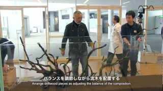 Download [ADAview] 新潟薬科大学 2m40cm水槽レイアウト制作(english sub) Video