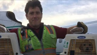 Download New details emerge on employee who stole, crashed airplane Video
