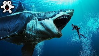 Download Top 20 Largest Sea Creatures that EVER Existed! Video