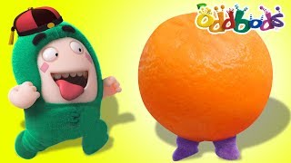 Download Oddbods   New Episodes   Chinese New Year Video
