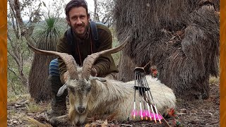 Download Traditional bowhunting in Australia - Winter 2018. Video
