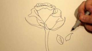 Download How to Draw a Rose (with a Sharpie) #1 Video