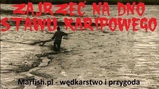 Download Zajrzeć na dno stawu karpiowego - reportaż z odłowu karpi na łowisku w Przelewicach Video