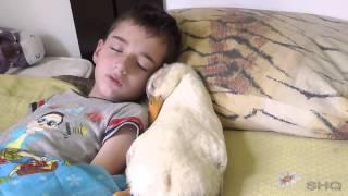 Download Duck / Nikita / child sleeping Video