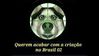 Download Querem acabar com a criação no Brasil 02 Video
