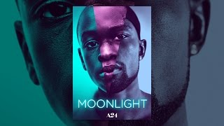 Download Moonlight Video