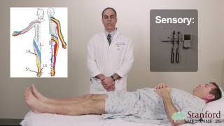 Download Approach to Low Back Pain Physical Exam - Stanford Medicine 25 Video