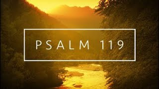 Download Psalm 119 // After his own heart \\ Thirsting for his ways W/Justin @ChristianTruthers Part 1 Video