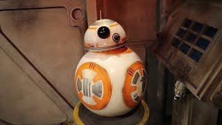 Download Star Wars Day   May the 4th at Disney's Hollywood Studios Video