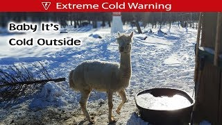 Download Extreme Cold Hits The Farm Video