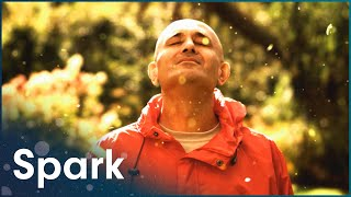 Download The Secrets Of Quantum Physics: Let There Be Life (Full Physics Documentary) | Spark Video