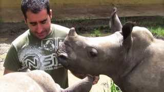 Download Antonio Rodriguez exotic animal vet Video