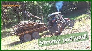 Download NIE SZTUKA ZAŁADOWAĆ, SZTUKĄ JEST WYJECHAĆ - ZETOR 6045 w lesie, trudne wyjazdy [#zrywka drewna] Video